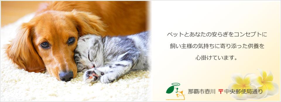 沖縄県のペット火葬なら【ペット葬儀・霊園ネット】